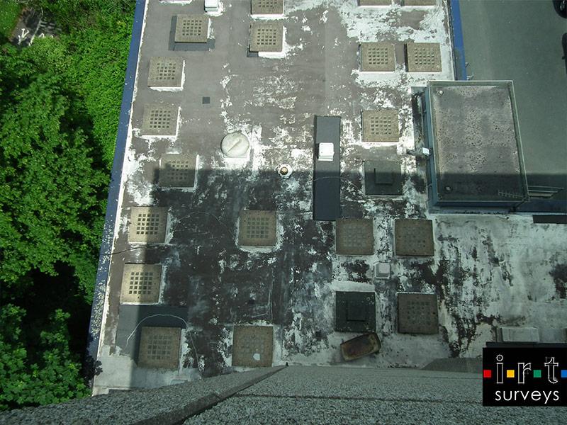 thermal drone surveys
